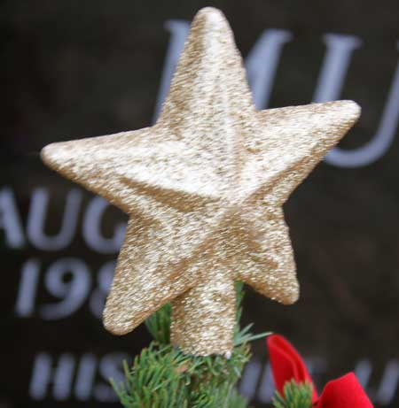The star sits on top of Richard's Christmas tree.